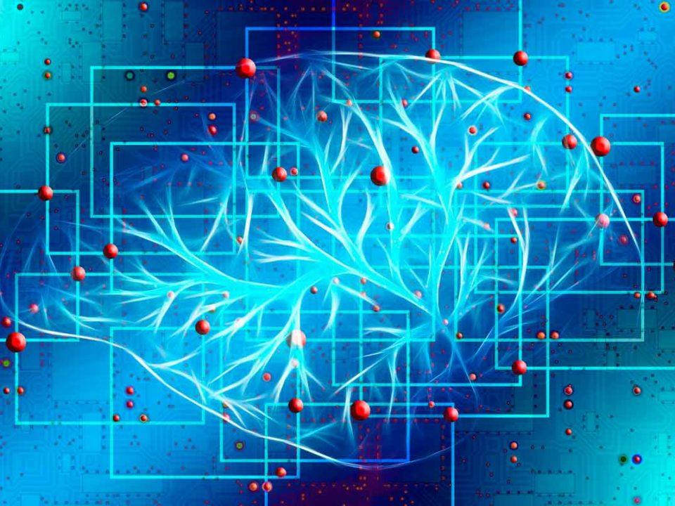 curso-de-neurociencia-y-bienestar