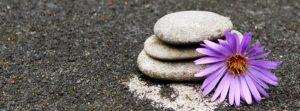 Curso de Meditación y Mindfulness Presencial