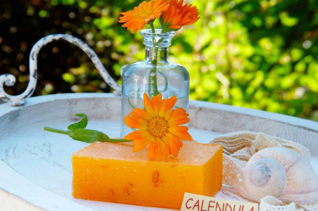 cursos-de-aceites-esenciales-y-aromaterapia-2-jpg
